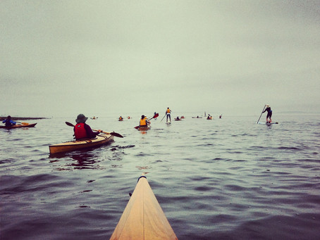 GTGO on Puget Sound Raises over $500!