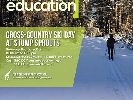 Cross-country skiing day at Stump Sprouts.