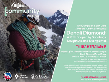 Denali Diamond: A Path Shaped by Sandbags, Doughnuts and Sitting Bivies