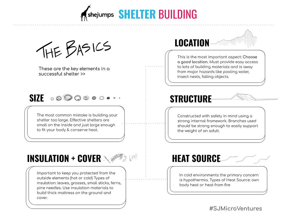 SheJumps downloadable PDF view on shelter building.