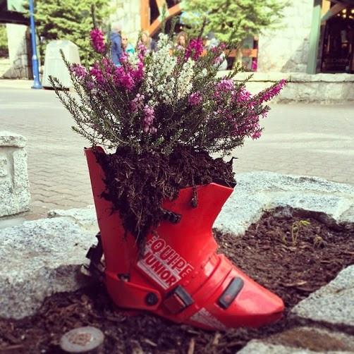 Ski-boot-planter.-Photo-via-@karenstefanson-via-Instagram