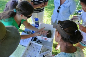 Entemology expert Maggie Jordan utilizes live samples to really bring an understanding of insects to life!