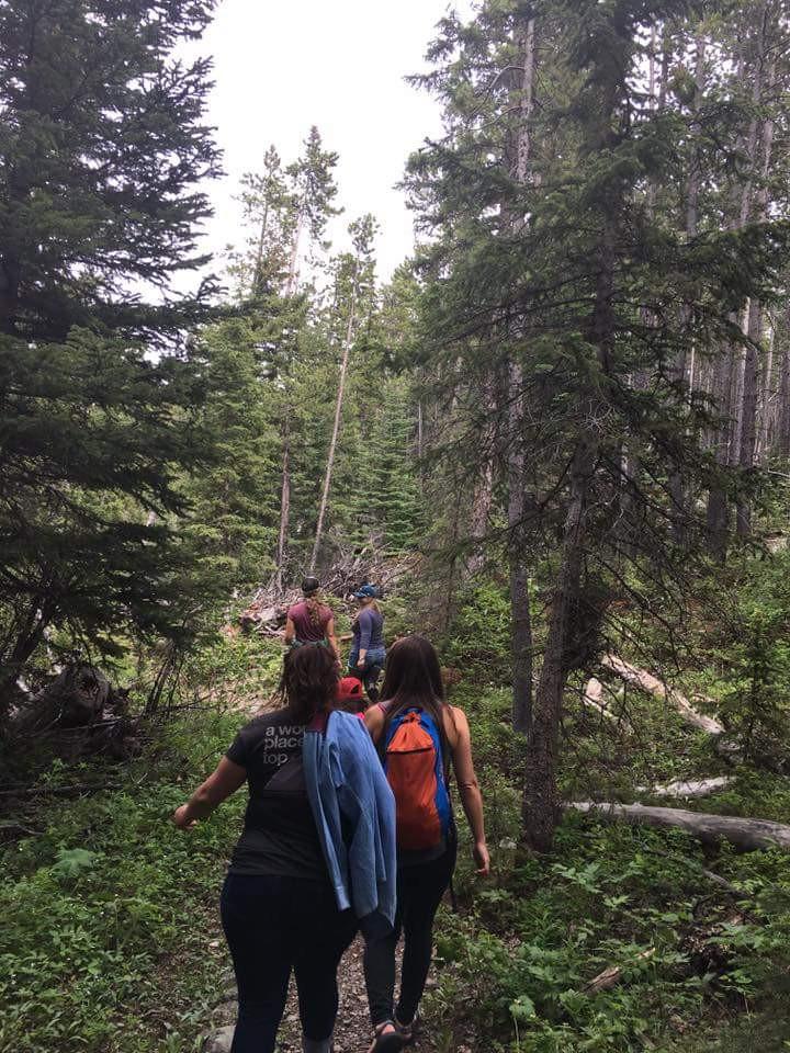 Beartooth Hiking