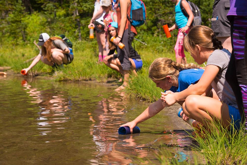 Purifying water at Elizabeth Lake.