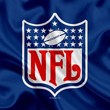 national-football-league-nfl-logo-emblem