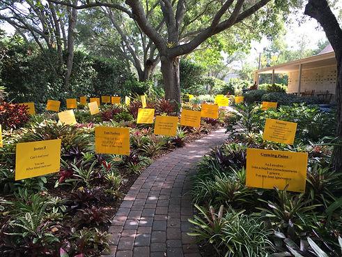 Bromeliad Garden.jpg