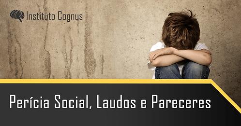 Perícia Social, Laudos e Pareceres