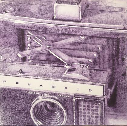 JAIRO ALFONSO, (Cuba),  Polaroid VII, 18