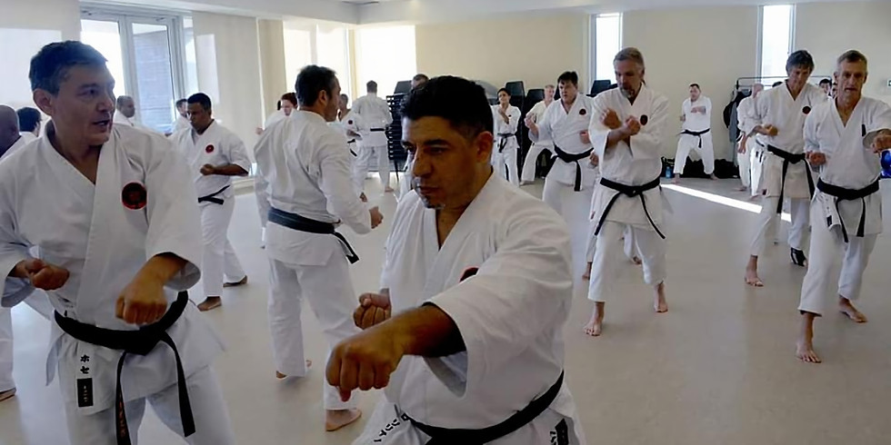 Free Virtual Karate Class