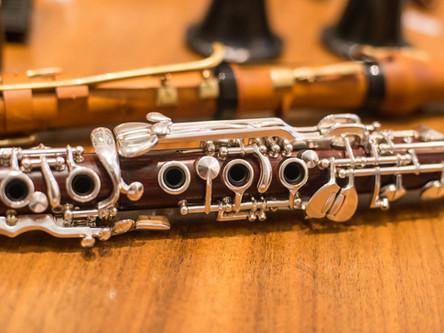 Gut' Holz? Hölzer und Materialien zur Herstellung des Klarinettenkorpus