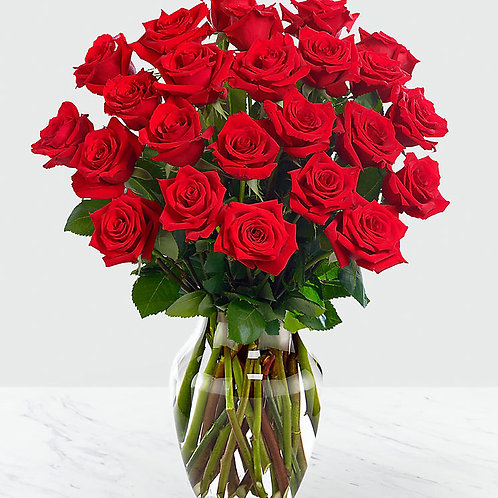 Red Roses - 24