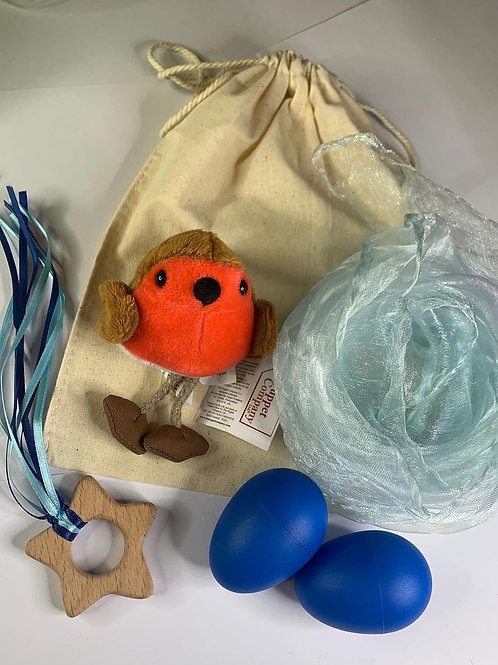 Christmas blue robin