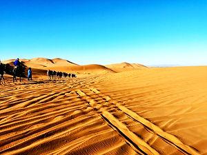 Group tour Morocco