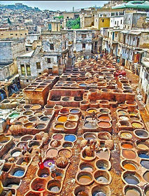Tours from Fes Morocco.jpg