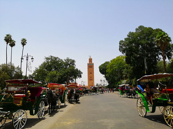 Tours from Marrakech.jpg
