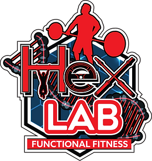 hex lab logo_new_red_gray_blue.png
