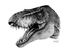 T Rex edited.jpg