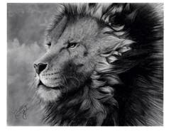 Lion edited.jpg