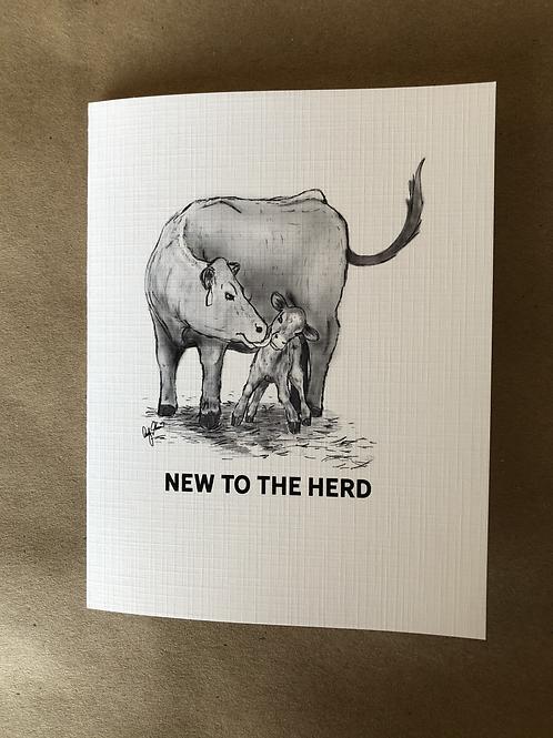 new to the herd II