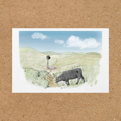 Summer Sandhills Print