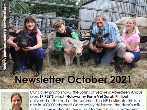 The Penbode Farm Vets October 2021 Newsletter is out now!
