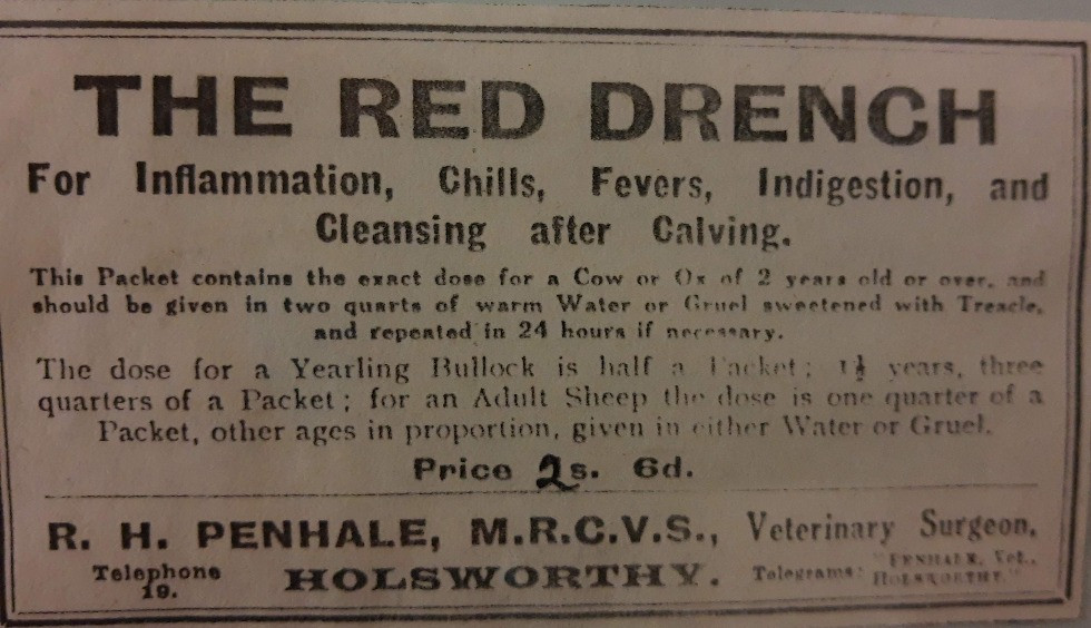 The Red Drench