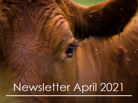 Penbode Farm Vets - Farm newsletters April 2021