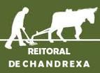 RECTORAL CHANDREXA.png