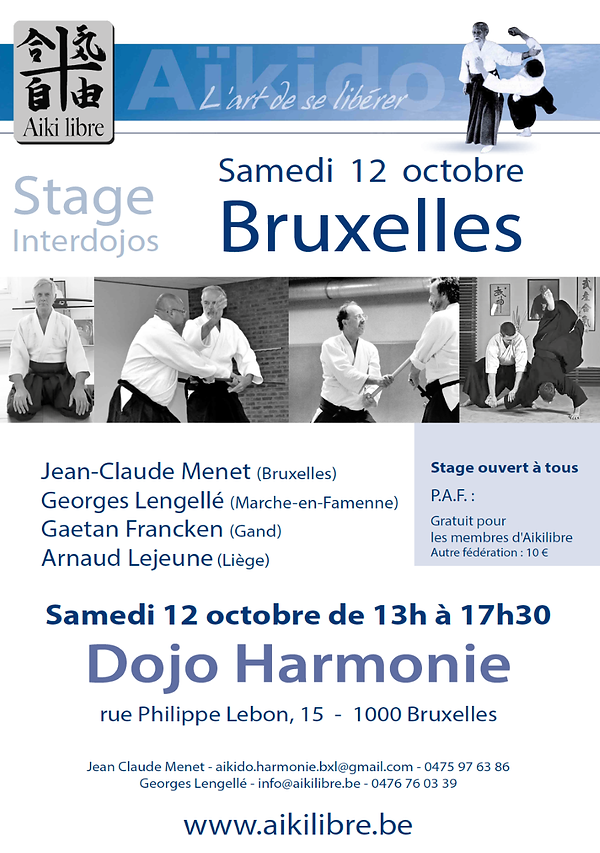 thumbnail_Aikido affice stage 12 octobre