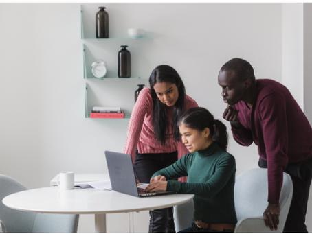 Revue du Doc #1 Explorer les styles de management de la diversité : théorie & application