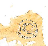 qb - rond - Sauzereau/Stokart