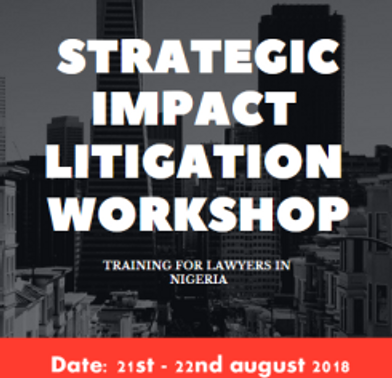 Strategic Impact Litigation Training Workshop