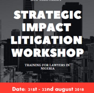 Strategic Impact Litigation Training Workshop