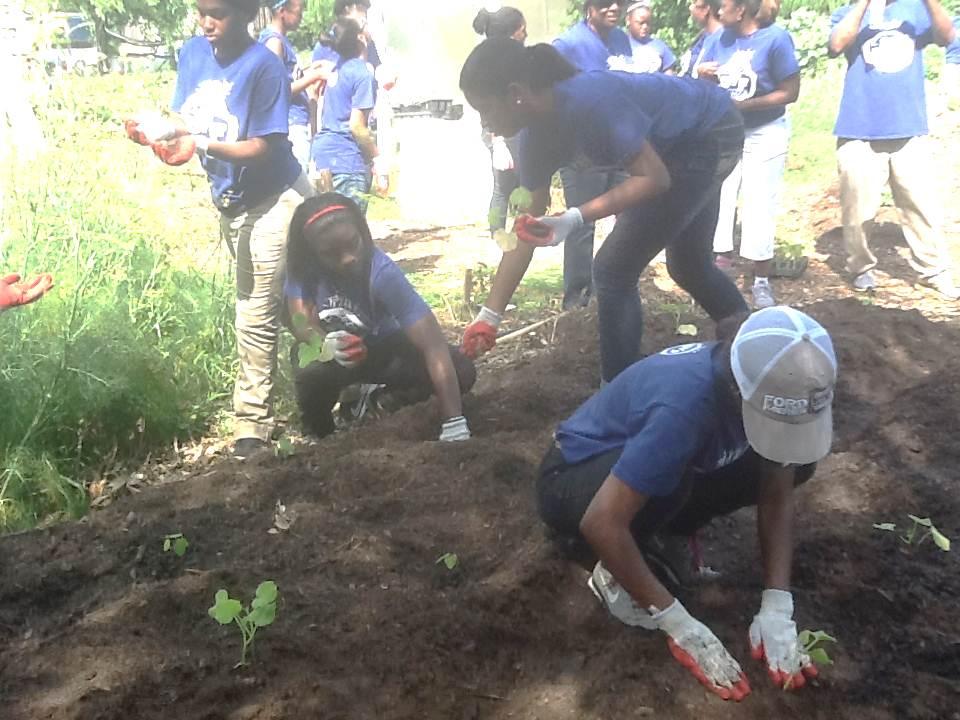 Garden Service Project