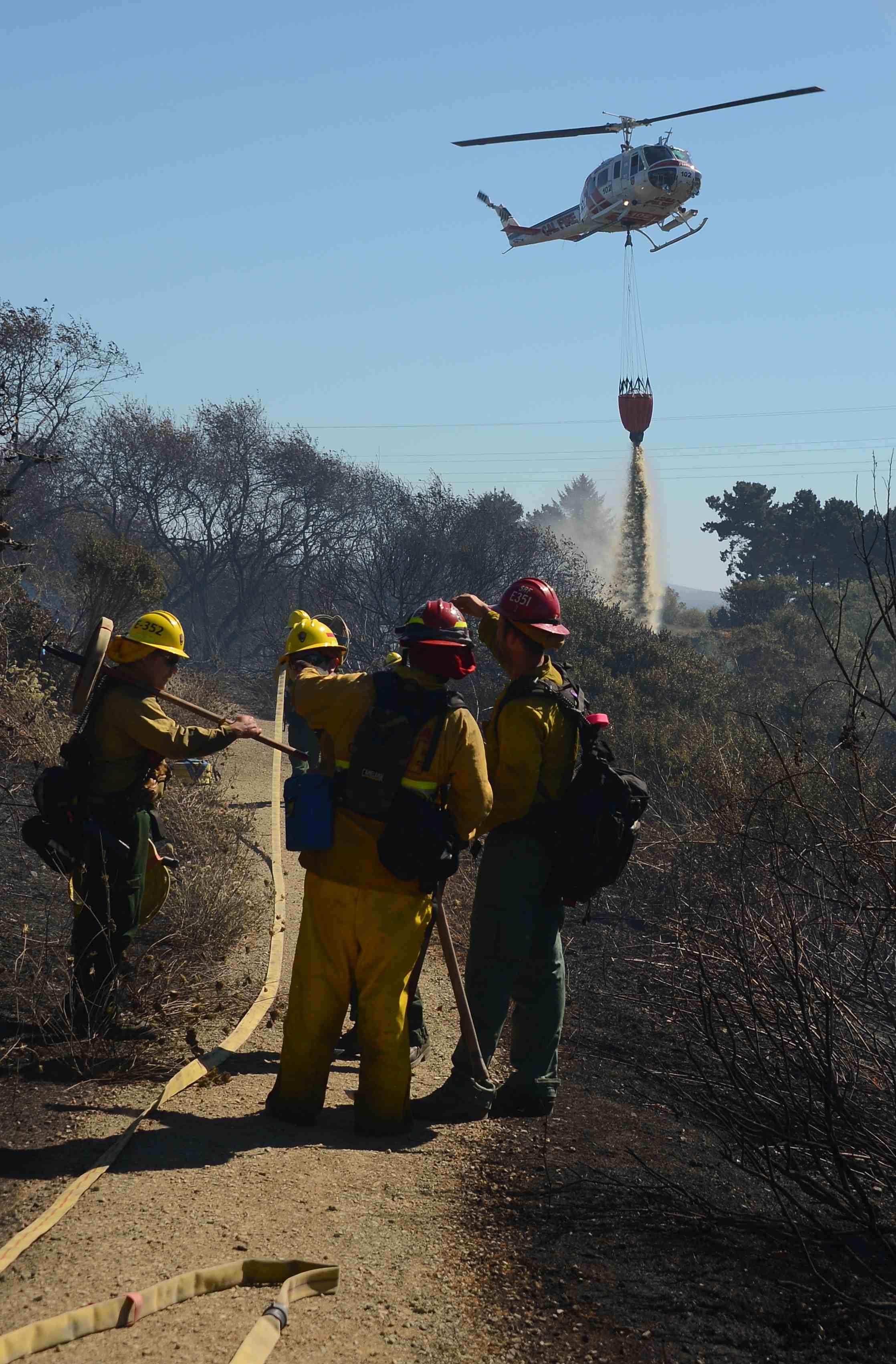 Marsh Vegetation Fire