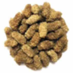 Dried-Mulberry.jpg