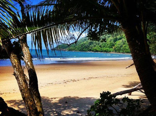 Delightfully Deserted Beaches