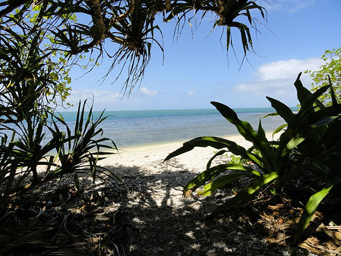 Beach1.jpg
