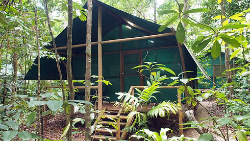 RainforestBungalow-Whole.JPG