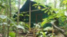 RainforestBungalow-Whole2.JPG
