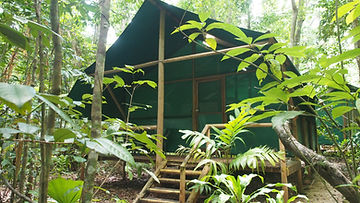 RainforestBungalow-Whole2.JPG
