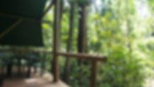 JungleDouble-View.JPG
