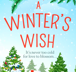 A Winter's Wish by Alice Ross