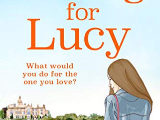 Looking for Lucy by Julie Houston