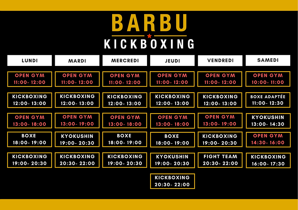 Barbu kickboxing 6.0.png