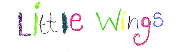 Little wings word banner.jpg