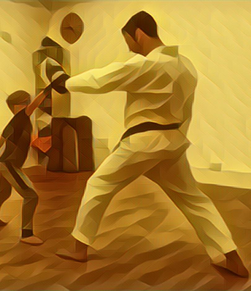 Martial arts pic3.jpg