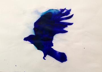 Blue Raven Flight