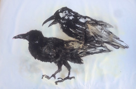 2 Ravens