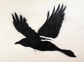 Big Raven